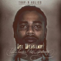 ICE BURGANDY - Progress Involves Risk Unfortunately